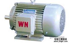 化工泵电机常见问题小结