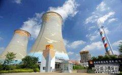 广州华润热电有限公司,耐酸腐蚀泵,案例