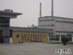 东莞理文造纸厂有限公司,耐酸碱泵,案例